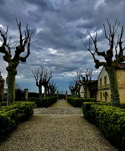 https://robert-parker-content-prod.s3.amazonaws.com/media/image/2018/04/17/3c930104c871466e87e47227936c0833_Bordeaux+2017-Chateau+Montrose+--+IMG_8534+-+FINAL.jpg
