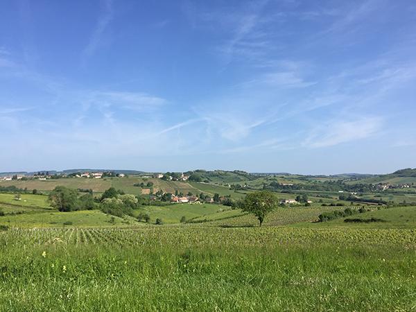 https://robert-parker-content-prod.s3.amazonaws.com/media/image/2018/07/20/340ef87d8ee34c7ba52bfb74f7db7809_Cote+Chalonnaise+landscape+-+FINAL.jpg