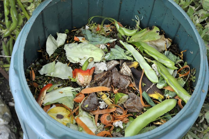 https://robert-parker-content-prod.s3.amazonaws.com/media/image/2019/10/07/ae42e53639fa4120a419571457d1f182_sustainable_practices_food_waste_INLINE.jpg