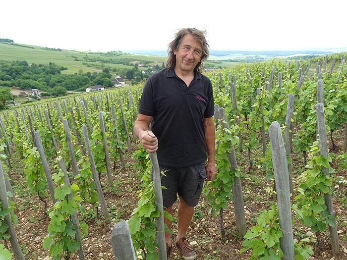 https://robert-parker-content-prod.s3.amazonaws.com/media/image/2021/02/08/1e21081388444d2da072779cd96a8bd7_4-france-burgundy-budget-thierry-Richoux-Irancy-vineyards.jpg
